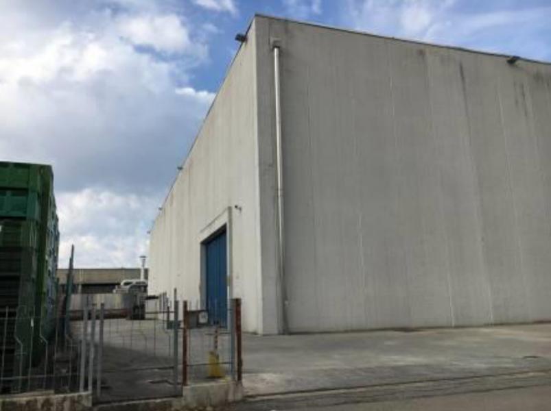 Fabbricato ad uso industriale in Gattatico (RE)